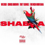 New Music: Wizkid ft. Chris Brown, Trey Songz & French Montana – Shabba