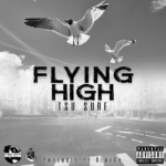 ItsBizkit Premiere: Tsu Surf – Flying High