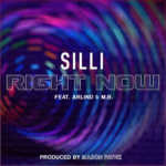 New Music: Silli ft. Arlind & M.B. – Right Now