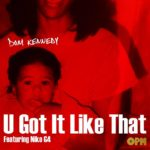 New Music: Dom Kennedy – U Got It Like That (Ft. Niko G4)