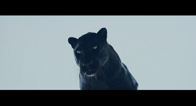 Video: The Weeknd – 'Mania' (Short Film)