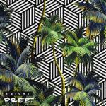 New Music: 8Eight – Pree